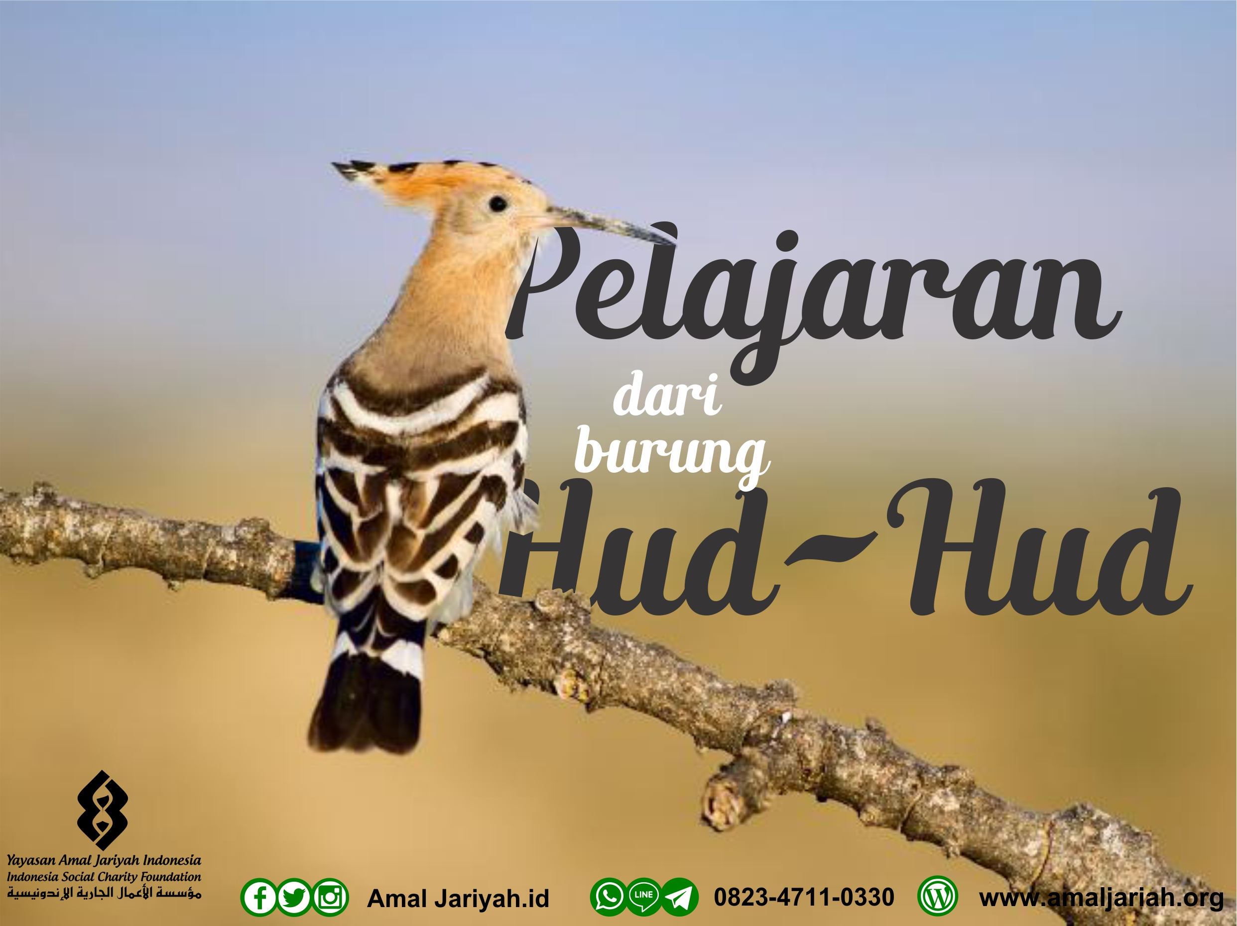 Burung Hud Hud In English
