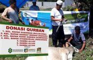 """Kepercayaan Masyarakat Terhadap YAJI Semakin Baik dengan Program """"Peduli Qurban"""""""